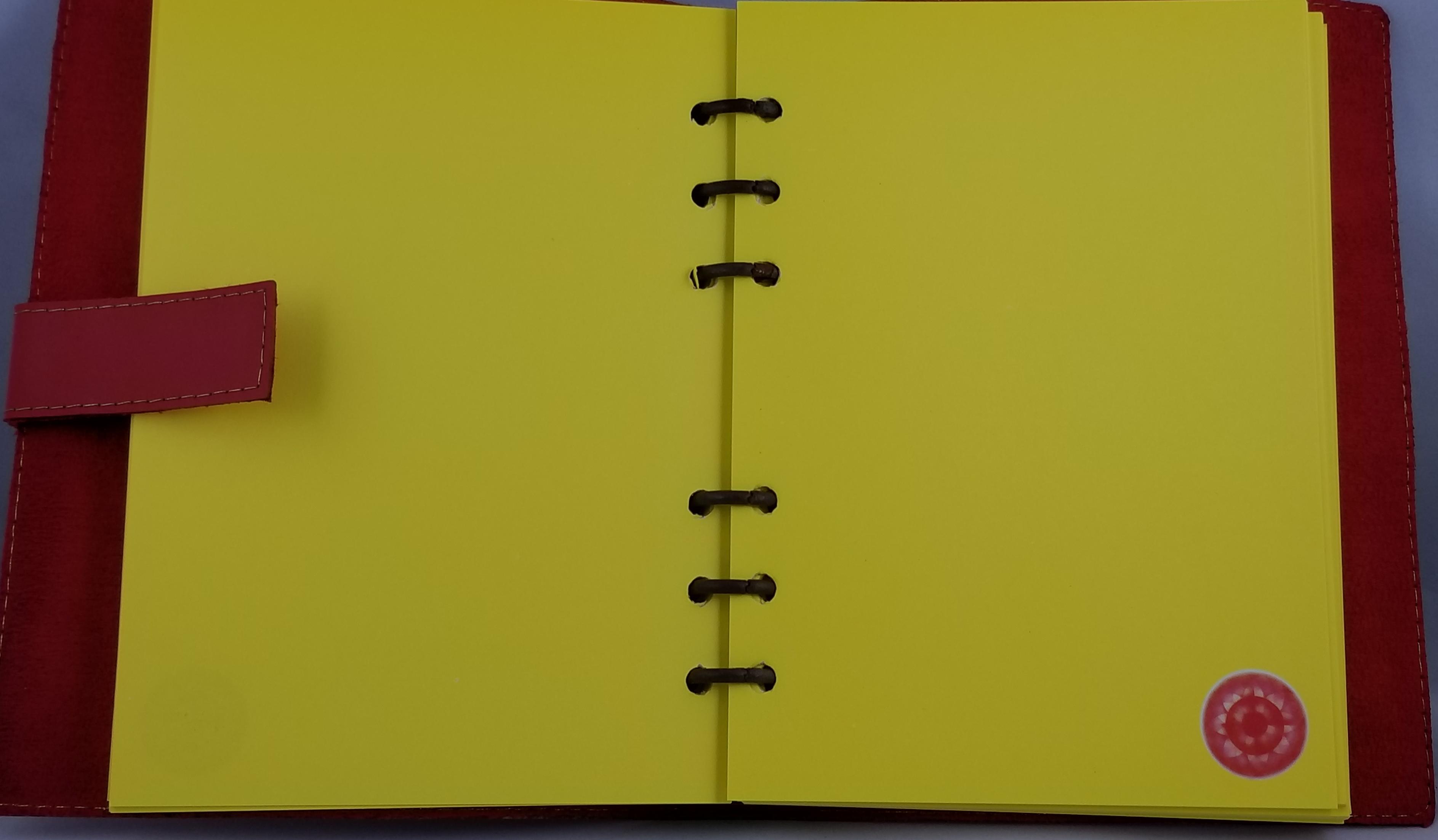 Kriyashakti Journal